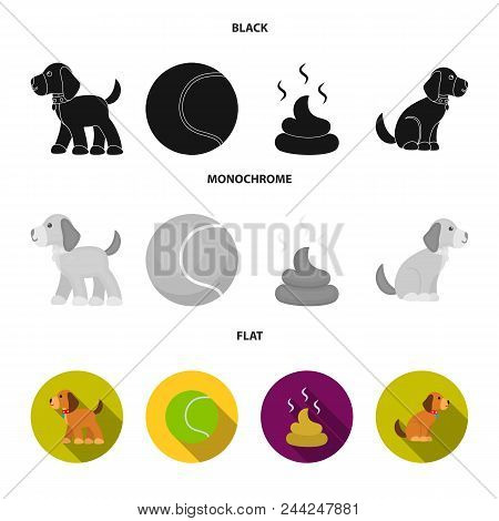 Dog Sitting, Dog Standing, Tennis Ball, Feces. Dog Set Collection Icons In Black, Flat, Monochrome S