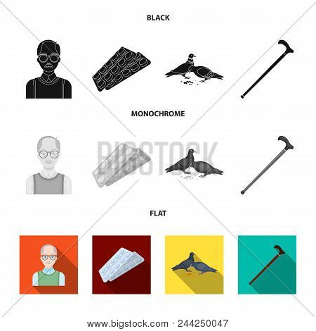 Elderly Men, Tablets, Pigeons, Walking Cane.old Age Set Collection Icons In Black, Flat, Monochrome