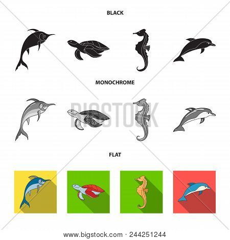 Merlin, Turtle And Other Species.sea Animals Set Collection Icons In Black, Flat, Monochrome Style V