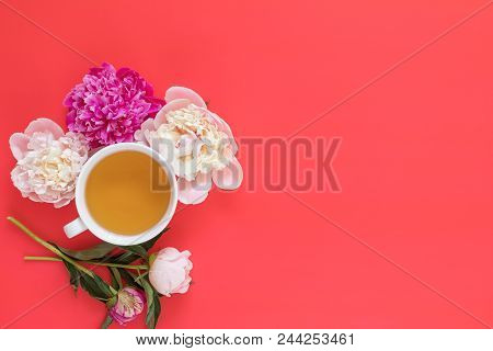 Cup Of Tea With White And Pink Peonies Flower Bouquet On Pink Red Background