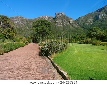 Kirstebosch Gardens, Cape Town, South Africa, With Mountains In The Back Ground And A Road And A Law