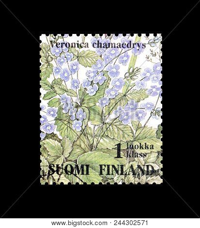 Finland - Circa 1994 : Cancelled Postage Stamp Printed By Finland, That Shows Germander Speedwell Fl