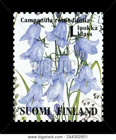 Finland - Circa 1994 : Cancelled Postage Stamp Printed By Finland, That Shows Harebell Flower.