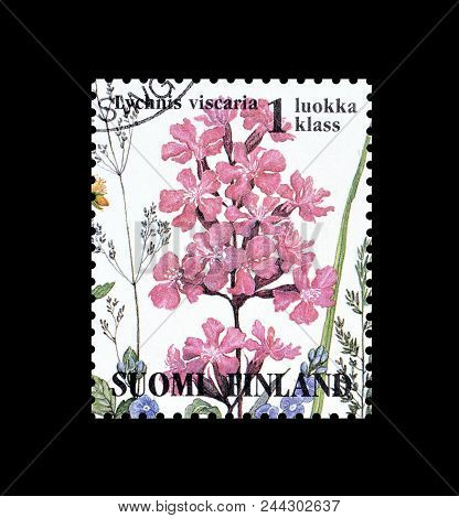 Finland - Circa 1994 : Cancelled Postage Stamp Printed By Finland, That Shows Sticky Catch Fly Flowe