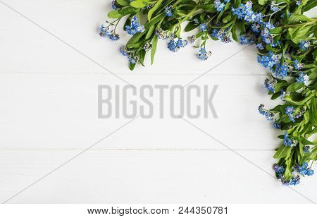 Forget-me-nots Flowers Border