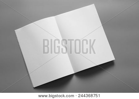 Blank Portrait A4. Brochure Magazine Isolated On Gray, Changeable Background / White Paper Isolated