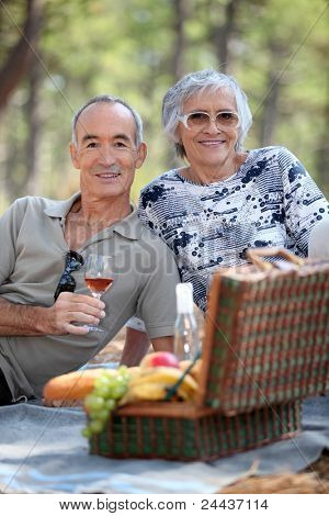 Senior couple enjoying a picnic