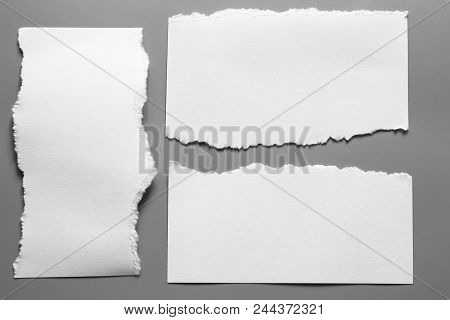 White Torn Paper On Gray Background. Collection Paper Rip.
