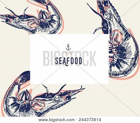 Seafood Banner Set. Hand Drawn Shrimp. Vector Restaurant Menu. Marine Food Banner, Flyer Design. Eng