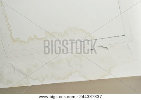Excessive moisture can cause mold and peeling paint wall ,such as rainwater leaks or water leaks. for empty central space for text. poster