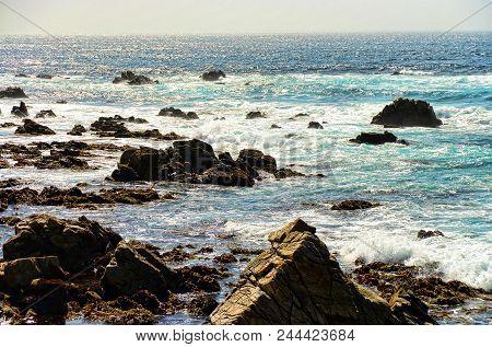Pacific Ocean Asilomar State Marine Reserve Monterey Californi