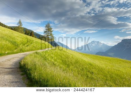 Mountainbikestrecke Durch Eine Bergwiese In Den Alpen