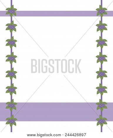 Postcard Border Frame White Field Purple Edges With A Composition Of Green Leaves And Shallow Purple