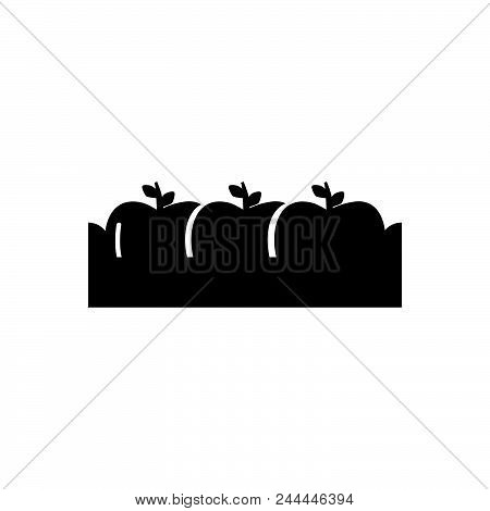 Apple Box Vector Icon On White Background. Apple Box Modern Icon For Graphic And Web Design. Apple B