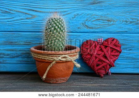 A Green Cactus In A Pot And A Red Heart Near A Blue Wall