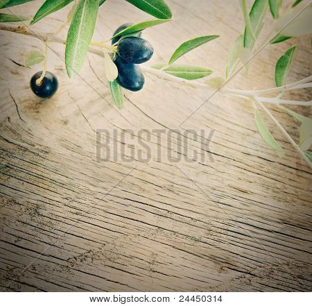 Olive Branch On Wooden Background