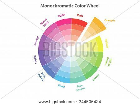 Monochromatic Color Wheel, Color Scheme Theory, Oranges Color In Evidence, Vector Isolated Or White