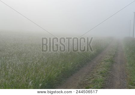 Spring Misty Path In The Countryside Of South Bohemia, Czech Republic