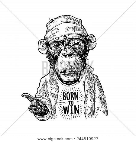 Monkeys Begging Dressed In A Hat And A Robe Stretched Paw. Lettering Born To Win. Vintage Black Engr