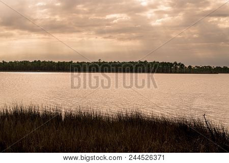 Tarkiln Bayou Preserve State Park Near Pensacola Florida Is A Must See If Your In The Area, Beauty E