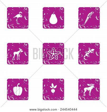Wilderness Territory Icons Set. Grunge Set Of 9 Wilderness Territory Vector Icons For Web Isolated O