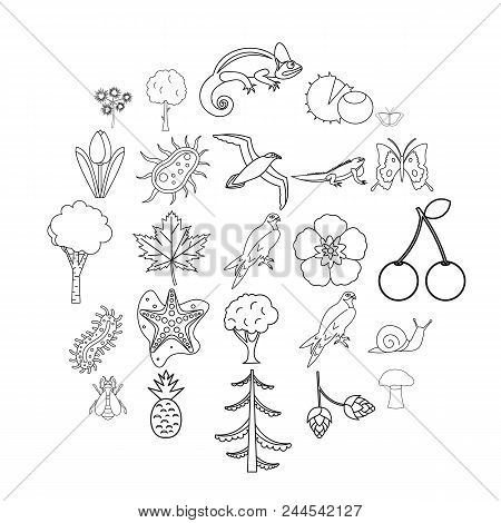 Woodland Icons Set. Outline Set Of 25 Woodland Vector Icons For Web Isolated On White Background
