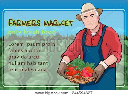 Farmer In Field, Vector Illustration, Colorful Cartoon Drawing, Farmer Market Poster, Banner. Elderl