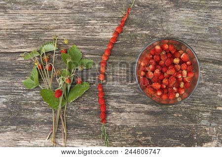 Wild Strawberries Gathered In Glass And On Grass Straw On Wooden Table, Top View. Ripe Woodland Stra