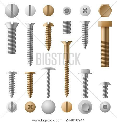 Stainless Bolts Screws, Nuts, Fasteners And Rivets Vector Illustration Isolated On White Background.