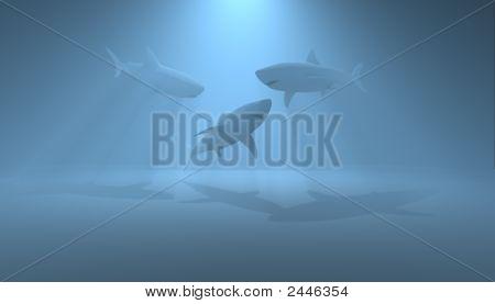 render of three sharks in blue light poster