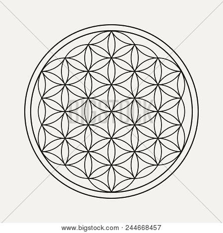 Flower Of Life Mandala In Outline Style. Zen Illustration, Yoga Background. Eps10 Vector.