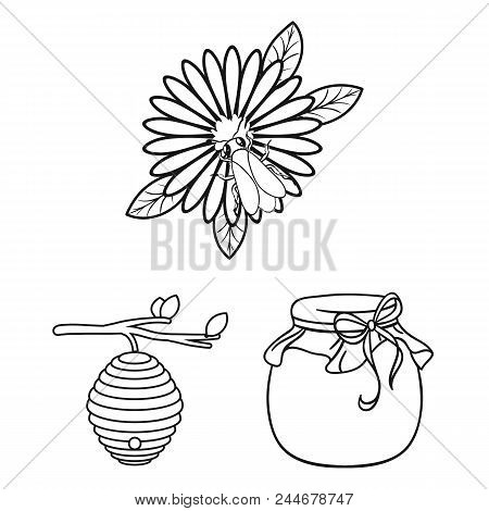Apiary And Beekeeping Outline Icons In Set Collection For Design.equipment And Production Of Honey V
