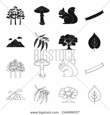 Mountain, Cloud, Tree, Branch, Leaf.forest Set Collection Icons In Black, Outline Style Vector Symbo