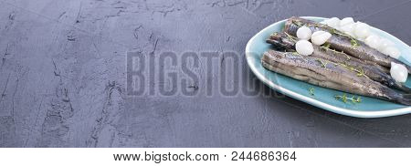 Herring fillets with onions on a blue plate, a traditional Dutch delicacy. Delicious seafood meal. Copy space. flat lay poster