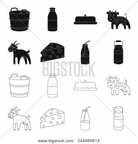 Goat, A Piece Of Cheese And Other Products. Milk Set Collection Icons In Black, Outline Style Vector