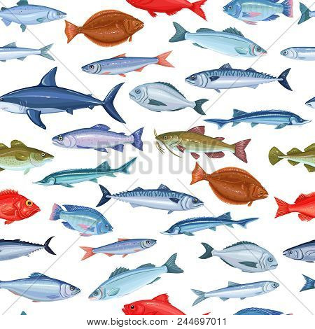 Vector Seamless Pattern With Fish. Background Seafood With Salmon, Anchovy, Codfish, Sea Bass, Ocean