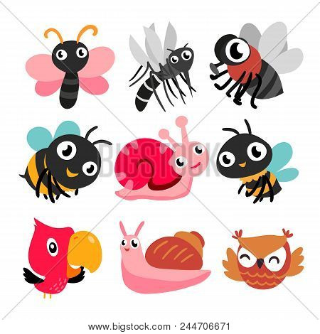 Bugs And Bird Collection, Insect Character Design, Insect Set, Bugs Collection