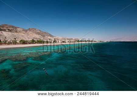 Coral reef in the Gulf of Eilat, Red Sea