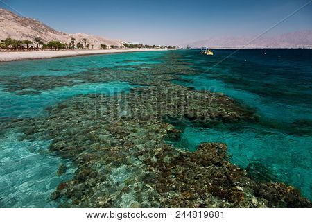 Coral reef in the Gulf of Eilat, Israel, Red Sea