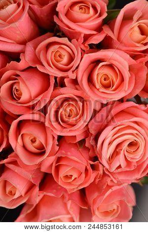 Set of bouquet orange rose