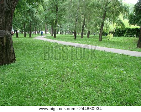 A Dirt Path In A Summer Park, A Forest. Sunny Evening In The Park, Tropic Through The Park, Forest,