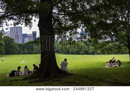 New York City, Usa - June 6, 2010: People Enjoying A Sunny Day At The Central Park With The New York