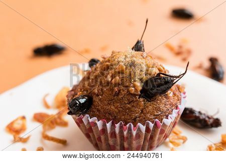 Banana Cupcakes With Insect Foods - Banana Cupcakes With Insect Foods On A White Plate And Crispy Sh