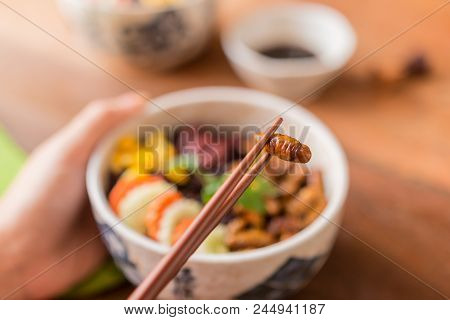 Insects Food With Rice Berry -  Human Female Hands Holding Insects Food With Rice Berry In A Retro B