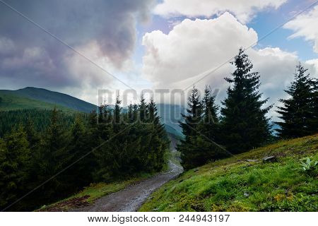Mountain Road Through Pine Forest And Beautiful Clouds. Sky And Mountain Natural Landscape. Nature L
