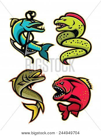 Mascot Icon Illustration Set Of Ferocious And Fearsome Fishes Like The Barracuda, Moray Eel, Norther