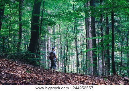 Alone man in wild forest. Travel and adventure concept. Mountains landscape photography
