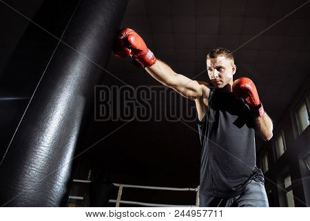 The Man In Boxing Gloves. Boxing Man Ready To Fight. Boxing, Workout, Muscle, Strength, Power - The
