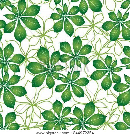 Seamless Background With Green And Contours Leaves Of Chestnut, Nature Tile Pattern For Your Design.