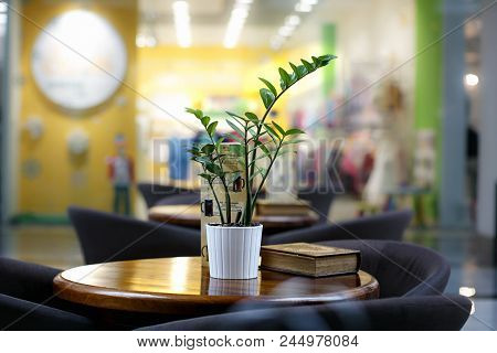 Cafe Table And Wooden Chairs With Modern Design Sensibilities. Interior Of New Modern Cafe. Cozy Tra